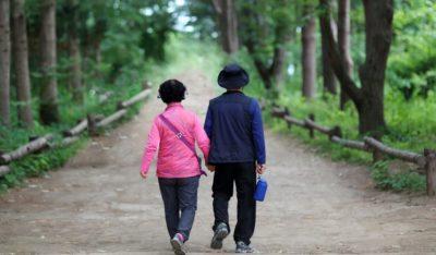elderly-couple-2623639_1280